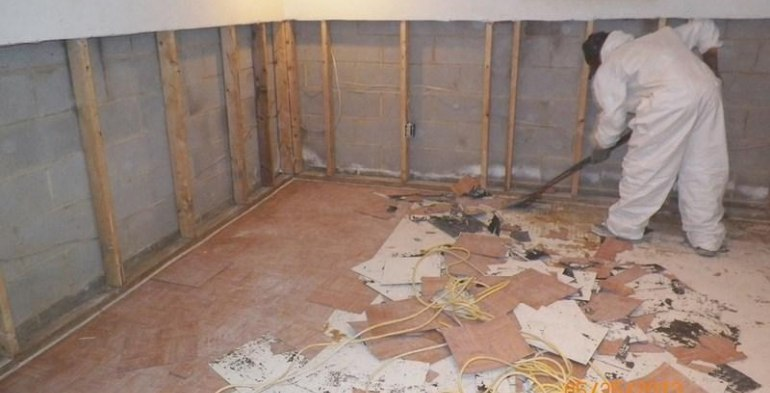 Basement Mold Removal, Inspection and Clean Up Services